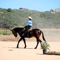 HorseBreakers Ranch Buckle Series ~ Morning Classes Ranch Riding